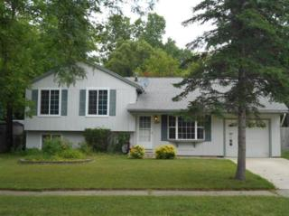 2101  Stratton Ct  , Ann Arbor, MI 48108 (MLS #3223731) :: The Toth Team