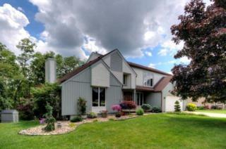 382  Saline River Dr  , Saline, MI 48176 (MLS #3224013) :: The Toth Team