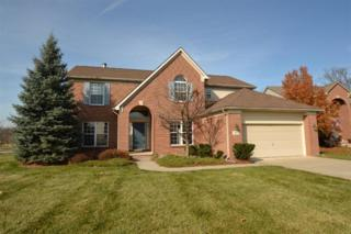 183  Wild Ivy Ct  , Ann Arbor, MI 48103 (MLS #3227075) :: The Toth Team