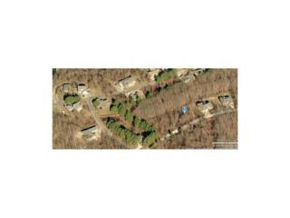 Miller Drive  , Bella Vista, AR 72714 (MLS #698898) :: McNaughton Real Estate