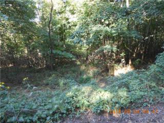 Co. Rd. 5320 Road  , Japton, AR 72740 (MLS #716610) :: McNaughton Real Estate