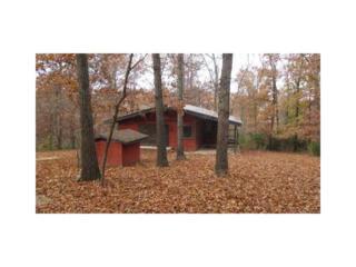 22495  E Scott Hollow Road  , Springdale, AR 72764 (MLS #720994) :: McNaughton Real Estate