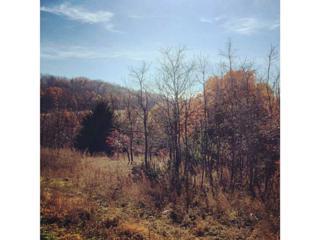 18216  Stout Mountain Road  , Fayetteville, AR 72701 (MLS #721457) :: McNaughton Real Estate