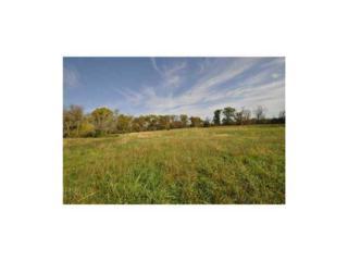 Pleasant Ridge 10.35 Acres Road  , Rogers, AR 72756 (MLS #721485) :: McNaughton Real Estate