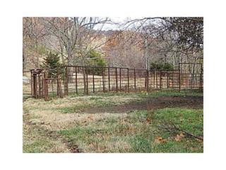 Cr 1538 Road  , Green Forest, AR 72638 (MLS #721746) :: McNaughton Real Estate