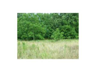 5351  Miles View Road  , Fayetteville, AR 72701 (MLS #722134) :: McNaughton Real Estate