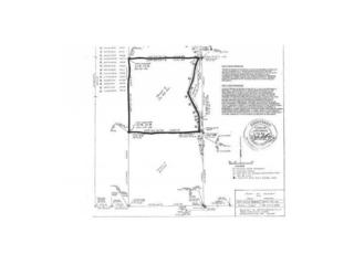0  Green Plastic Tract 2 Road  , West Fork, AR 72774 (MLS #722575) :: McNaughton Real Estate