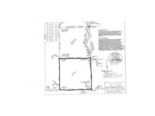 0  Green Plastic Tract 3 Road  , West Fork, AR 72774 (MLS #722576) :: McNaughton Real Estate