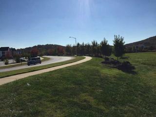 Beechwood Drive  , Fayetteville, AR 72701 (MLS #723354) :: McNaughton Real Estate