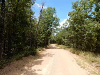 0  Cr 939 .  , Berryville, AR 72616 (MLS #724062) :: McNaughton Real Estate
