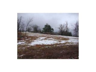 Hidden Springs 1.242A Road  , Fayetteville, AR 72703 (MLS #725608) :: McNaughton Real Estate