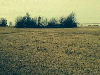 0  Barrington Road  , Springdale, AR 72762 (MLS #725830) :: McNaughton Real Estate