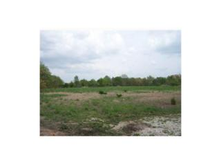 Industrial Drive  , Rogers, AR 72756 (MLS #726424) :: McNaughton Real Estate