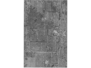 Pleasant Hill Road  , Lincoln, AR 72744 (MLS #727009) :: McNaughton Real Estate