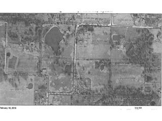 Pleasant Hill Road  , Lincoln, AR 72744 (MLS #727011) :: McNaughton Real Estate