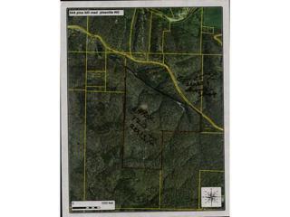 TBD  Pine Hill Road  , Pineville, MO 64856 (MLS #727919) :: McNaughton Real Estate
