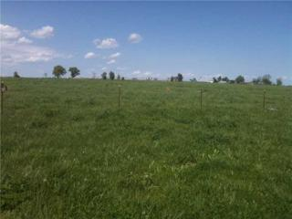 WC4805 W John Bolin Road  , Summers, AR 72769 (MLS #732599) :: McNaughton Real Estate