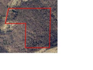 Greasy Valley Road  , Prairie Grove, AR  (MLS #732605) :: McNaughton Real Estate