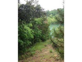 Circle , Cr 116 .  , Eureka Springs, AR 72631 (MLS #734442) :: McNaughton Real Estate