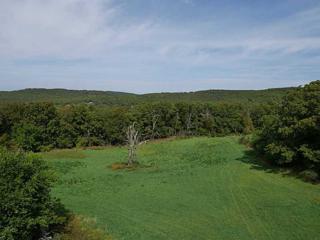 Truelove Road  , West Fork, AR 72774 (MLS #719463) :: McNaughton Real Estate
