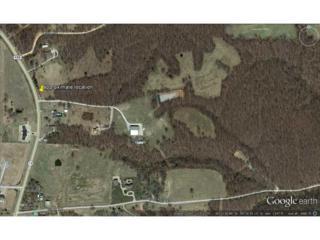 Hwy 72 Highway  , Bentonville, AR 72712 (MLS #723811) :: McNaughton Real Estate