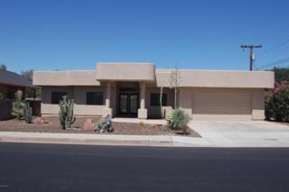 464 N Pleasant Drive  , Chandler, AZ 85225 (MLS #5121023) :: Carrington Real Estate Services