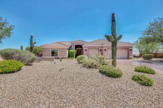 1439 E Breezy Court  , Phoenix, AZ 85086 (MLS #5156763) :: Morrison Residential LLC