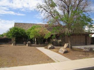 261 E Huber Street  , Mesa, AZ 85201 (MLS #5160974) :: Carrington Real Estate Services