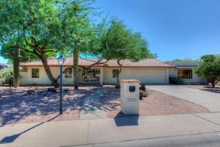5013 N 69TH Place  , Paradise Valley, AZ 85253 (MLS #5162650) :: Arizona Best Real Estate