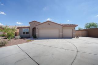 10115 W Patrick Lane  , Peoria, AZ 85383 (MLS #5164019) :: Keller Williams Legacy One Realty