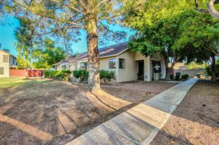 2455 E Broadway Road  19, Mesa, AZ 85204 (MLS #5164637) :: Carrington Real Estate Services