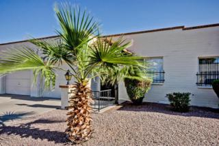 440 S Parkcrest Street  117, Mesa, AZ 85206 (MLS #5164651) :: Carrington Real Estate Services