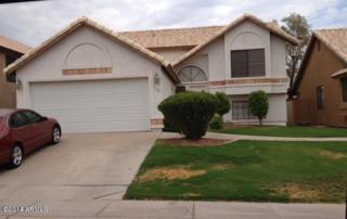 3302 E Hiddenview Drive  , Phoenix, AZ 85048 (MLS #5164878) :: West USA Realty Revelation