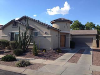 924 E Cherry Hills Drive  , Chandler, AZ 85249 (MLS #5165084) :: Carrington Real Estate Services
