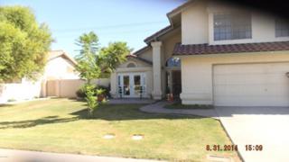 1417 E Brentrup Drive  , Tempe, AZ 85283 (MLS #5165105) :: Morrison Residential LLC