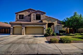 714 E Aquarius Place  , Chandler, AZ 85249 (MLS #5165107) :: Morrison Residential LLC
