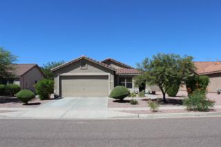 3128 W Mark Lane  , Phoenix, AZ 85083 (MLS #5165348) :: Morrison Residential LLC