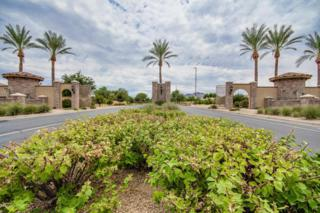 7016 S Stadium Court  , Gilbert, AZ 85298 (MLS #5165350) :: Morrison Residential LLC