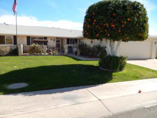 10510 W Saratoga Circle  , Sun City, AZ 85351 (MLS #5165418) :: Carrington Real Estate Services