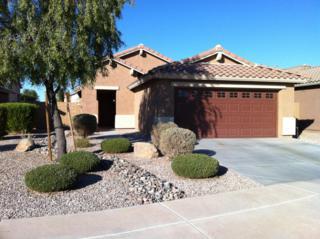 2006 W Gold Dust Avenue  , Queen Creek, AZ 85142 (MLS #5168815) :: West USA Realty Revelation