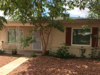 9414 N Central Avenue  , Phoenix, AZ 85020 (MLS #5170718) :: The Carin Nguyen Team