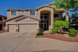 6018 N 133RD Drive  , Litchfield Park, AZ 85340 (MLS #5171224) :: The Carin Nguyen Team
