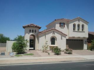 22320 E Cherrywood Drive  , Queen Creek, AZ 85142 (MLS #5171867) :: West USA Realty Revelation