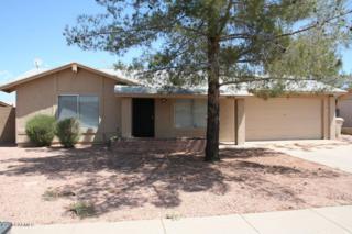 5602 W Villa Maria Drive  , Glendale, AZ 85308 (MLS #5172474) :: Carrington Real Estate Services