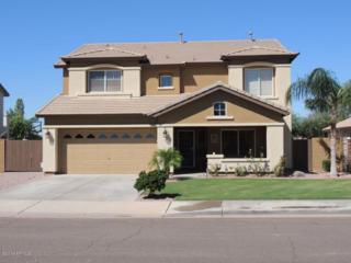 3978 N 143Rd. Lane  , Goodyear, AZ 85395 (MLS #5172493) :: Carrington Real Estate Services