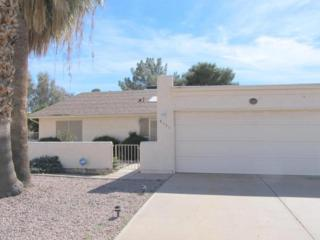 9531 E Palomino Place  , Sun Lakes, AZ 85248 (MLS #5172494) :: Carrington Real Estate Services