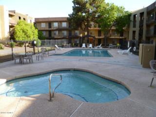 461 W Holmes Avenue  273, Mesa, AZ 85210 (MLS #5173568) :: West USA Realty Revelation