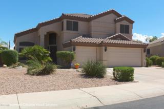 1381 S Karen Drive  , Chandler, AZ 85286 (MLS #5173626) :: West USA Realty Revelation