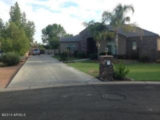 4403 E Desert Lane Court  , Gilbert, AZ 85234 (MLS #5173690) :: West USA Realty Revelation