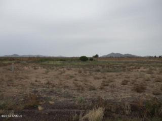 9278 N Salmonson Way  , Maricopa, AZ 85139 (MLS #5175015) :: West USA Realty Revelation